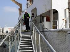 Duif vliegt machinekamer schip binnen en reist als verstekeling mee naar Vlissingen