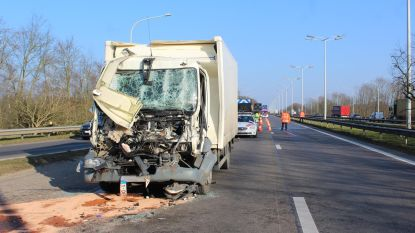 Truck merkt file op E314 te laat op: chauffeur zwaargewond