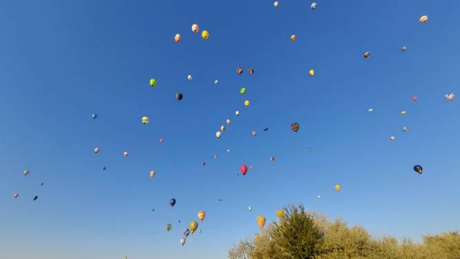 Sint-Niklase piloten verdedigen Belgische eer op EK ballonvaren in Hongarije