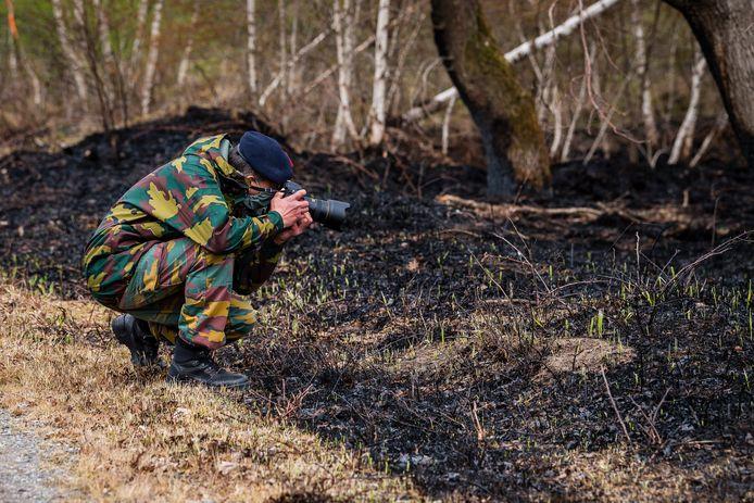 Zo'n 570 hectare van het militair domein ging in vlammen op.