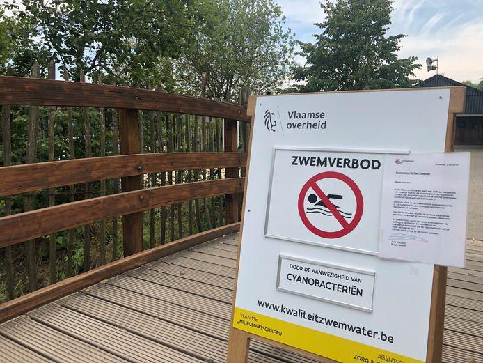 In De Plas in Rotselaar geldt opnieuw een zwemverbod.