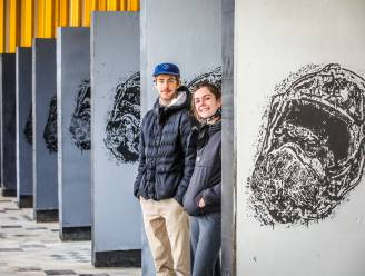 """Jeugdhuis De Kim plaatst opvallende kunstwerken in Gaanderijen: """"De panelen op deze iconische plek hadden wat weg van een toiletdeur"""""""