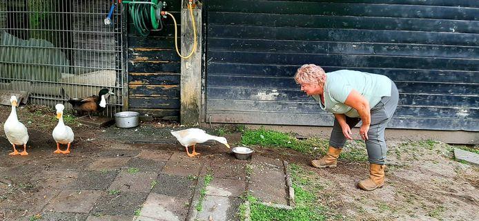 Voorzitter Ria Hilhorst van Dierenweide Vleuten moet afscheid nemen van veel dieren.