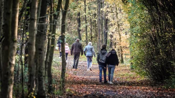 Drevestappers wandelen naar een coronavrij 2021