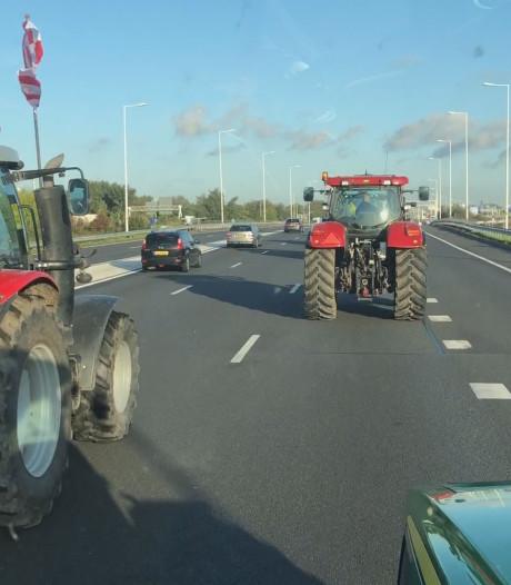 Dordtse boeren in Den Haag: 'De nieuwe regels betekenen waarschijnlijk einde bedrijf'