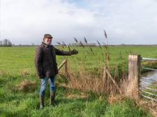 Vrij Polderland verzet zich tegen twee windturbines en zonnevelden in de Eempolders: 'Hoe bedenken ze het?'