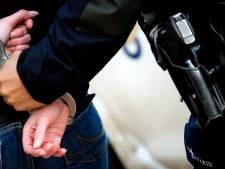 Passerende automobilist helpt agent met verdachte in de boeien slaan in Nijkerk
