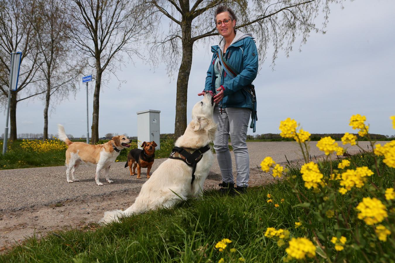 Wilma van stichting Sterk voor Dieren met haar honden aan de wandel.