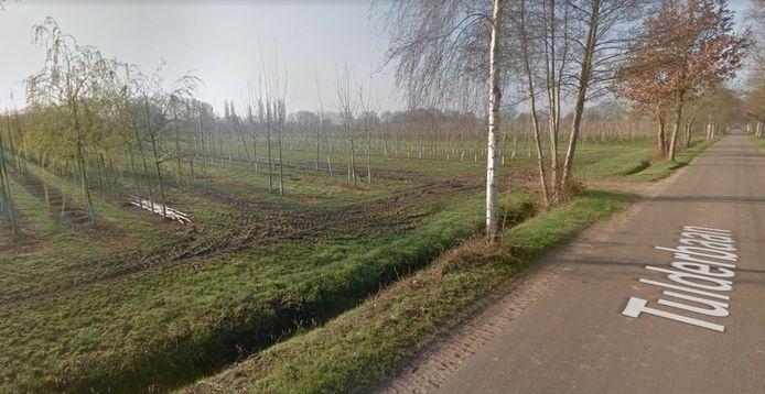 6 hectaren langs de Tulderbaan, tussen Pannenschuur en de N65, komen wat het CDA in Oisterwijk betreft voor woningbouw in aanmerking