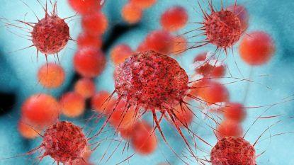 Veelbelovend onderzoek: dit virus kan kanker doden en voorkomen dat hij terugkeert