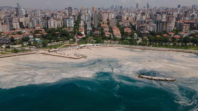 IN BEELD. Turkse Zee van Marmara nog steeds geteisterd door 'zeesnot'