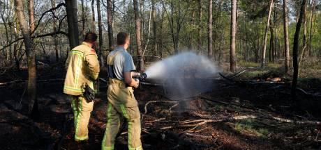 Brandweer schaalt in heel Brabant op naar fase 2: verhoogde kans op natuurbrand