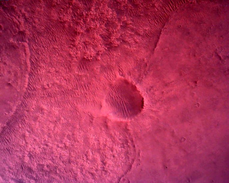 Het oppervlak van Mars direct onder NASA's Mars Perseverance-rover wordt gezien met behulp van de Rover Down-Look Camera in een afbeelding die op 22 februari 2021 is gemaakt. Beeld via REUTERS NASA