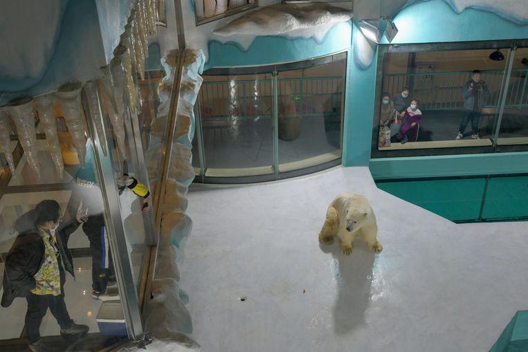 Gasten kijken naar een ijsbeer in het pas geopende hotel. Beeld REUTERS