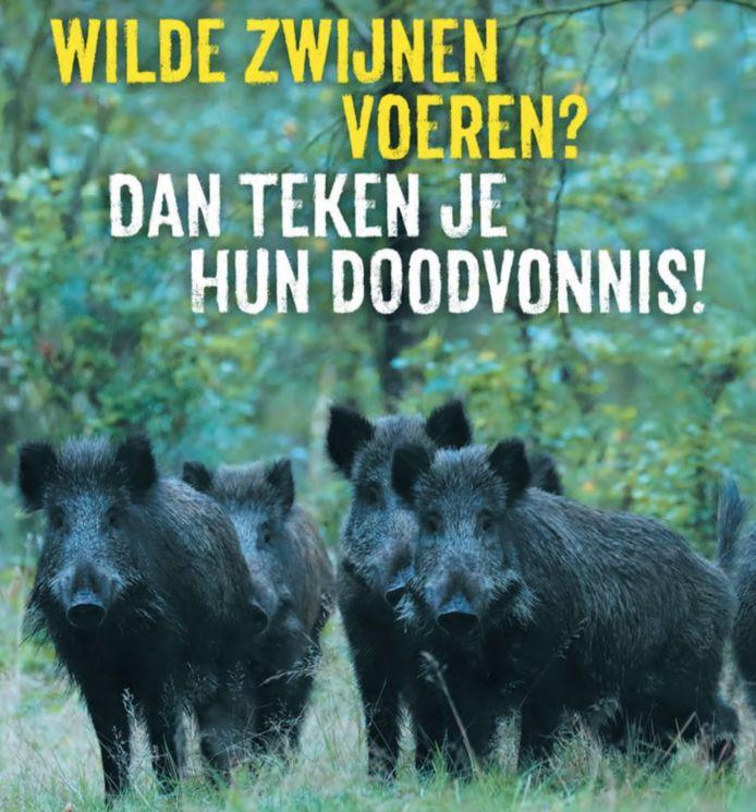 Voer geen wilde zwijnen. Die oproept doet samenwerkingsorganisatie Veluwe op 1. In de komende periode worden flyers en posters met deze boodschap verspreid op onder meer vakantieparken.