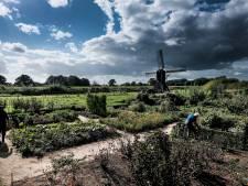 Onrust in Bronckhorst, dat omsingeld dreigt te worden door windmolens