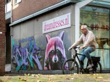 Kleurige wasbeer fleurt onooglijk steegje in Arnhemse binnenstad op