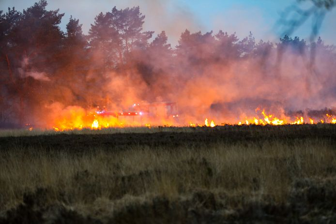 Een stuk heide langs de Aardhuisweg tussen Hoog Soeren en Uddel ging eind vorige maand in vlammen op.