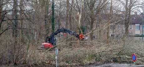 Roofvogels maken plaats voor bouw Pelikaan in Zevenbergen