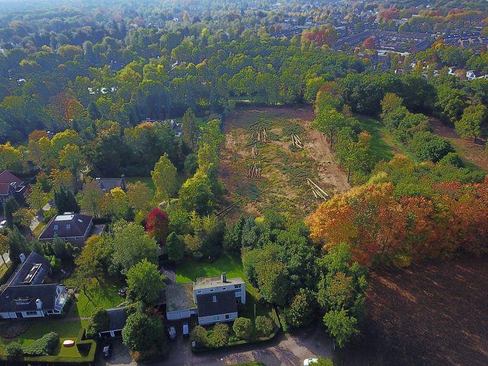 Achter riante villa's in Waalre is een flink stuk bos gekapt.