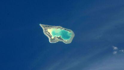Oceanen bedekken 70 procent van onze planeet, maar amper 13 procent is nog wildernis