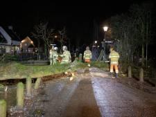 Flinke storm zorgt voor omgevallen bomen en schade in de regio, ook hek van prinses Beatrix beschadigd