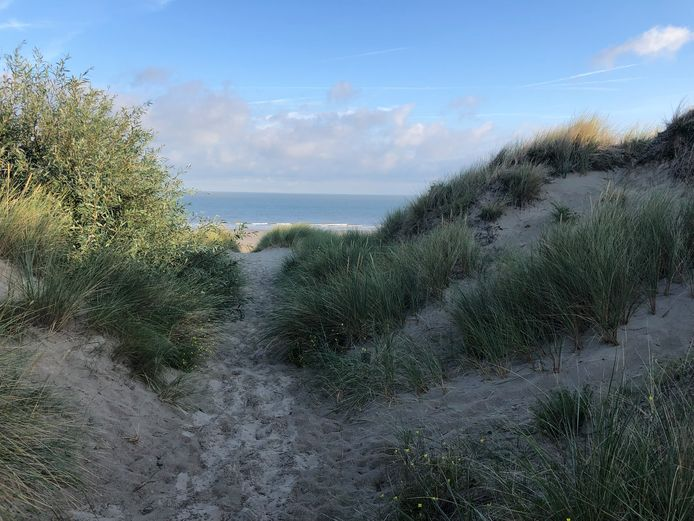De Blankenbergenaar werd betrapt in de duinen van Bredene.