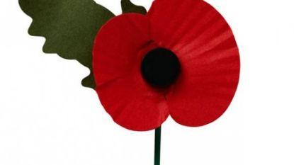 Herdenking Groote Oorlog in Zwalm