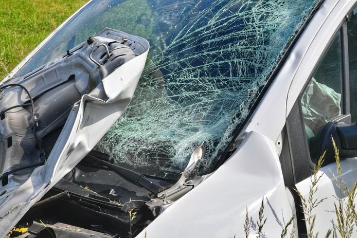 Een motorrijder is dinsdagmiddag om het leven gekomen bij een aanrijding met een busje op de N284 in Bladel.