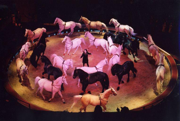 Het Wereldkerstcircus in Carré. Beeld Stardust Circus International