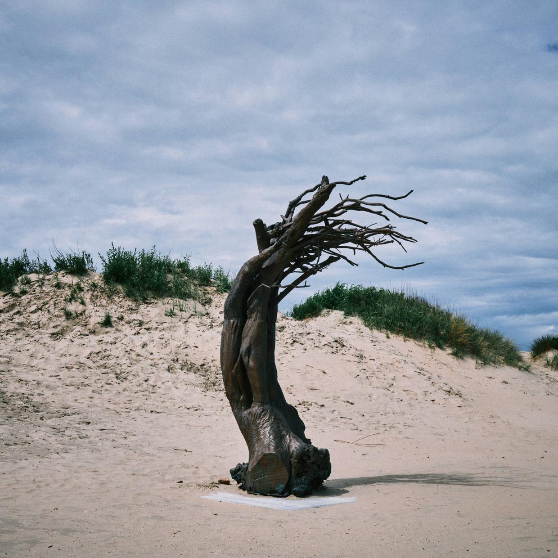 'Windswept' van Els Dietvorst in Oostduinkerke. Beeld Thomas Sweertvaegher