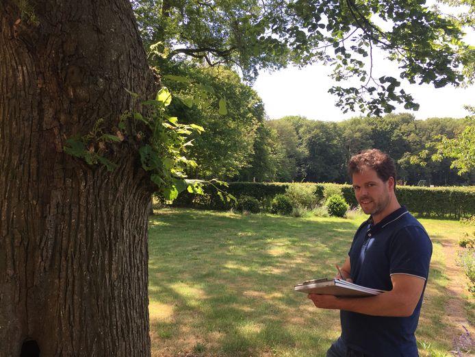 Boomexpert Gijs van Heuven van Arbor deed op verzoek van een aantal raadsfracties een schouw naar de 42 lindes aan de Lasondersingel.