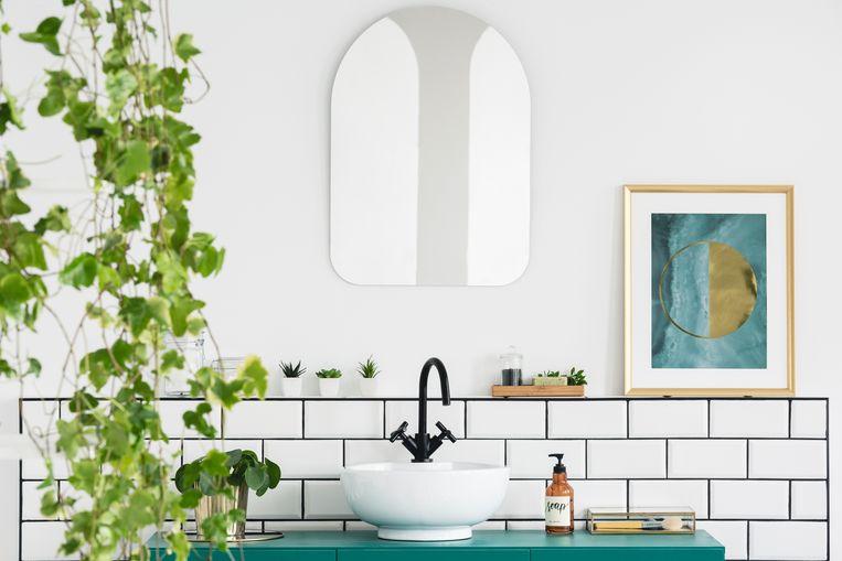 Een groene douche: de beste planten voor in je badkamer | Vrije tijd ...