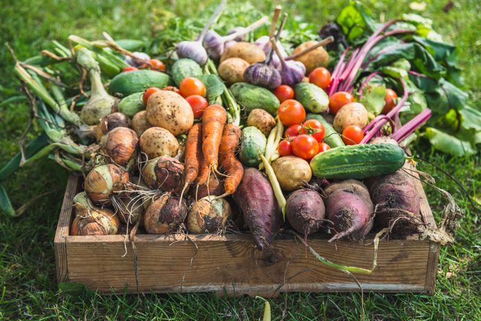 Wageningen moet meer plantaardig gaan eten.