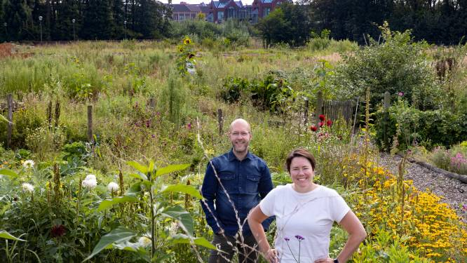 Brandevoort wil stadsboerderij in Slimme Wijk: 'We doen dit voor iedereen in Helmond'