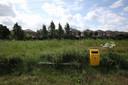 'Dit ziet er inderdaad niet uit', komt als reactie van de gemeente Helmond die de groenploeg gaat inseinen.