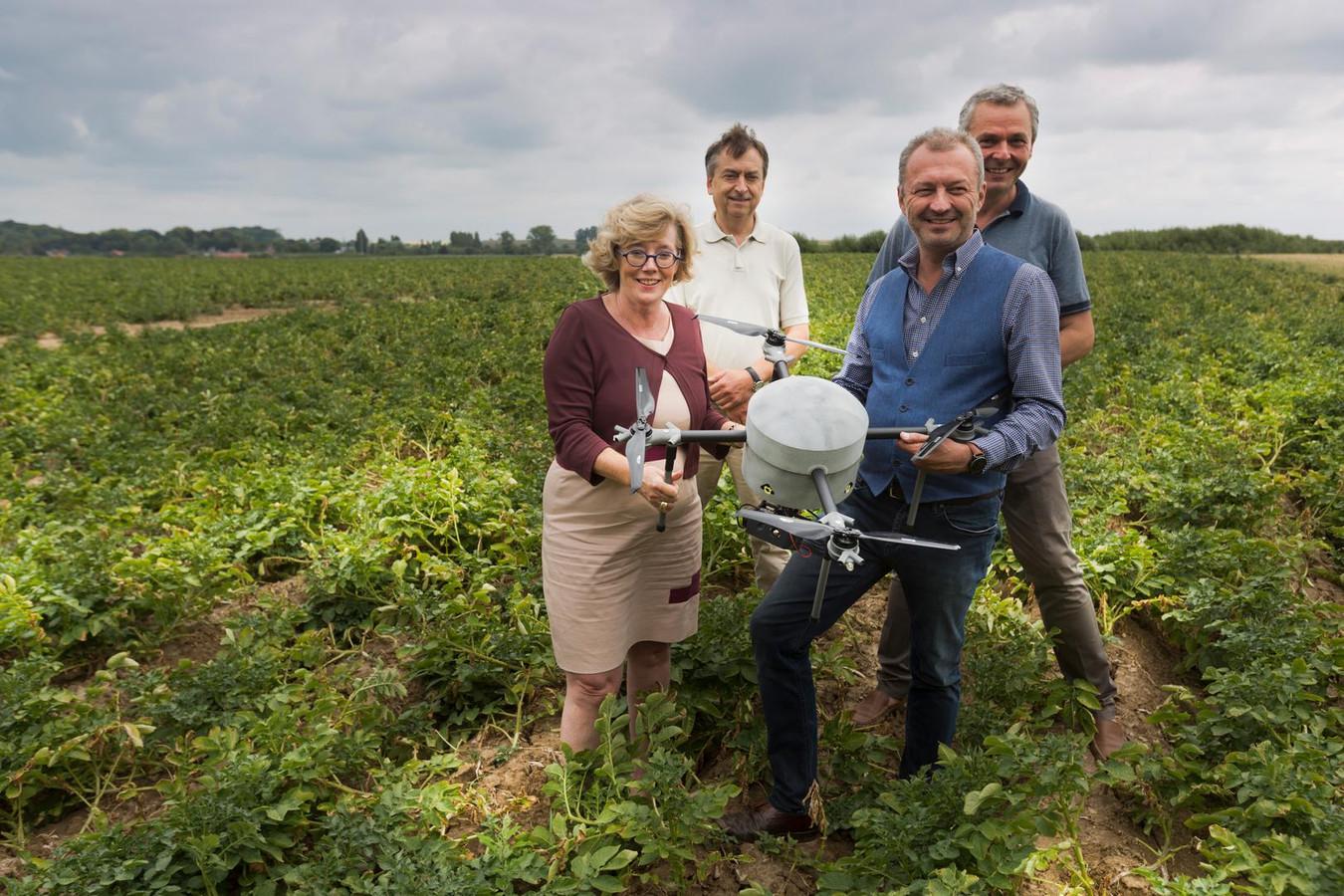De stad Sint-Truiden zet samen met het proefcentrum een drone in voor het meten van schade aan gewassen ten gevolge van de aanhoudende droogte.