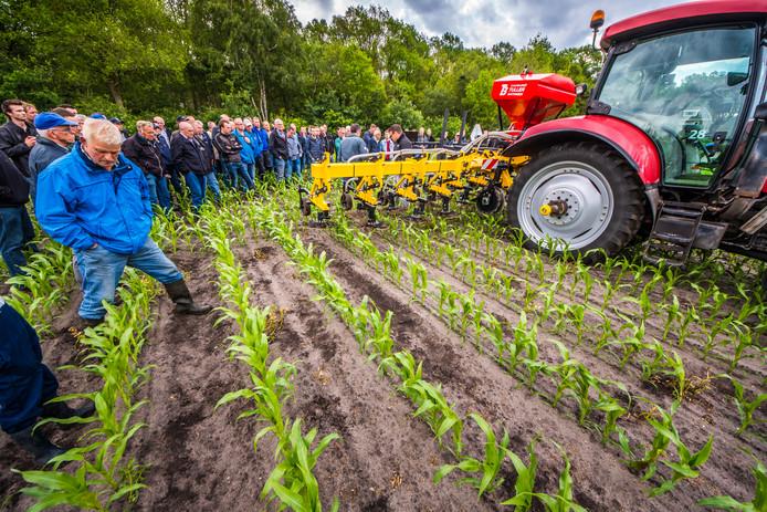 Boeren bekijken demonstratie gras onder mais zaaien in Holten.