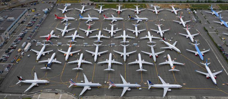 Verschillende Boeing 737-Max-toestellen die aan de grond gehouden worden. Beeld AFP