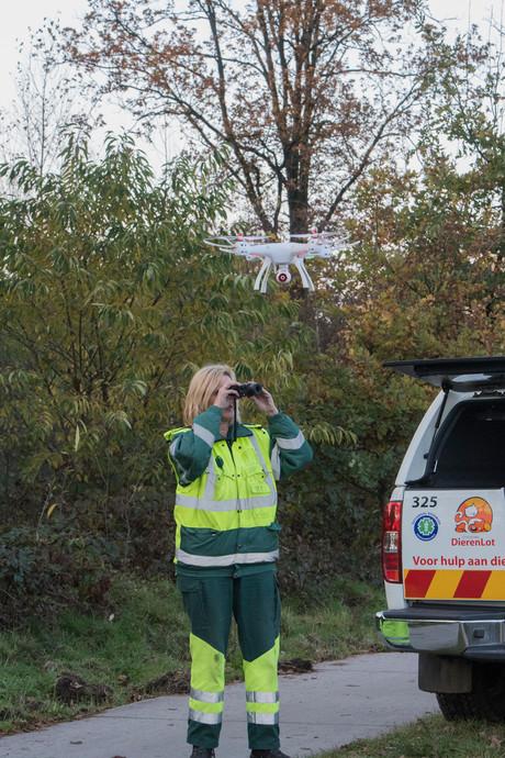 Dierenambulance zoekt tevergeefs met drone naar bejaarde Binky