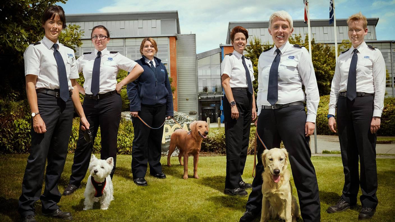 Animal Rescue School
