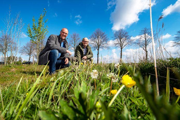 Wethouder Lazeroms (links) en Wim Hoeben van Waterschap Brabantse Delta bij een nu al hogere berm door aangepast maaibeleid. Dat is goed voor de bijen.