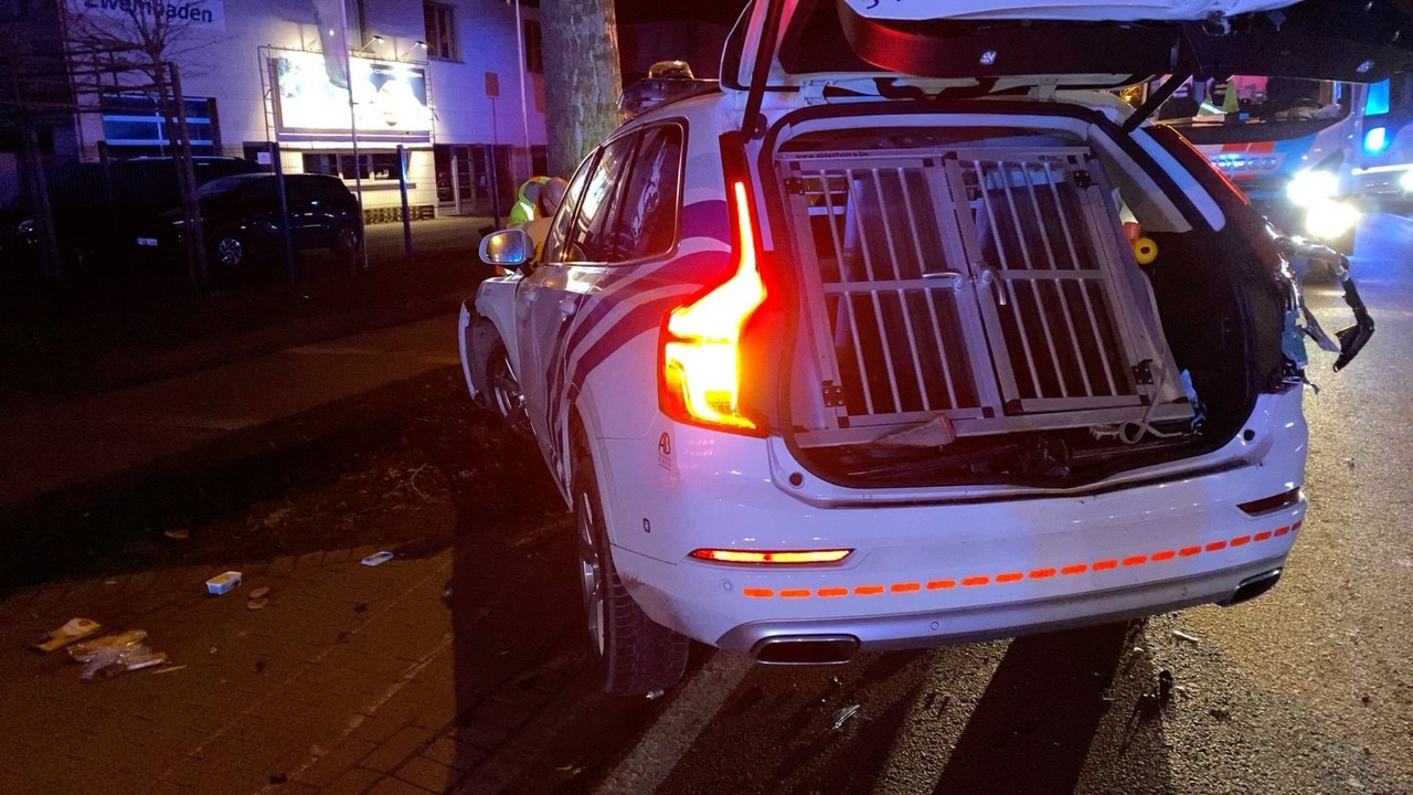 De honden van de politiezone Damme/Knokke-Heist overleefden de crash niet.