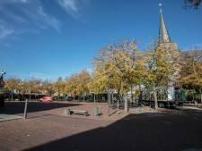 Nieuw reddingsplan nodig voor bomen op Markt in Deurne
