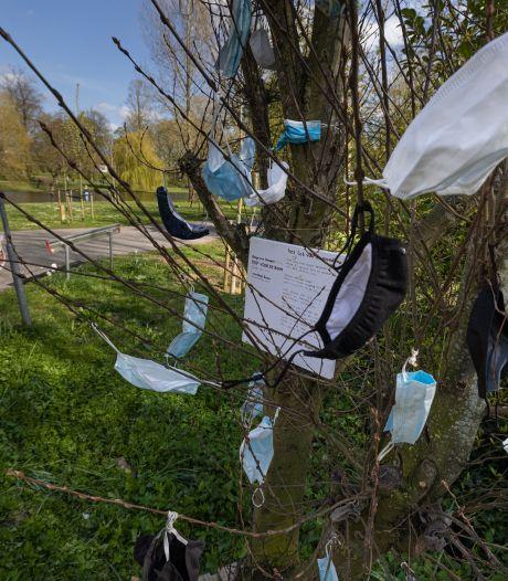 Lot van de mondkap moet Kampen wakker schudden: mondkapjesboom in stadspark