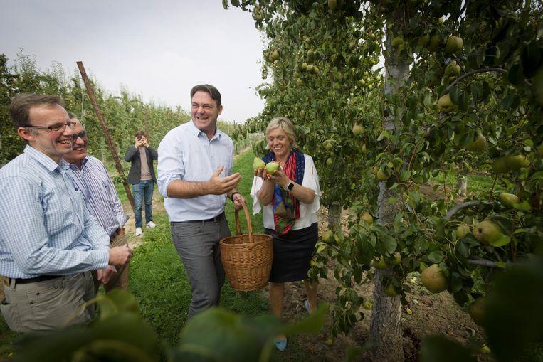 Minister Denis Ducarme hielp bij de fruitpluk.
