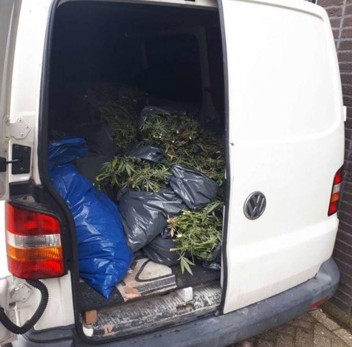 In het busje lag 140 kilo hennep.