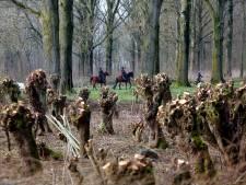 Groeten uit Giessen, het dorpje dat zoveel meer te bieden heeft dan ingeblikt groente en fruit
