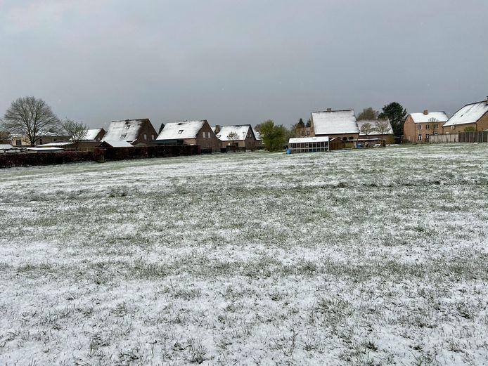 Winterse taferelen in Zoersel