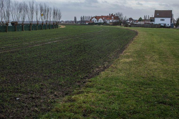 Al vijftien jaar wil het bestuur van Knokke-Heist de Tolpaertpolder, een landbouwgebied tussen de deelgemeenten Knokke en Westkappelle, gebruiken om er betaalbare woningen te bouwen. De polder is grotendeels in het bezit van de familie Lippens.  Beeld BAS BOGAERTS